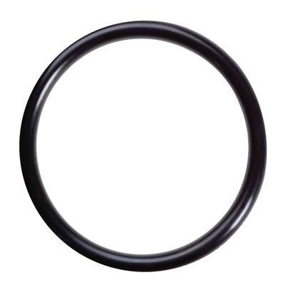 OR3X3V O-Ring Viton