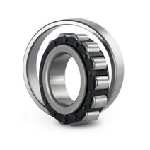 LRJ 5/8 Cylindrical Roller Bearing