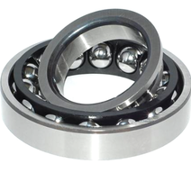 F-234976.06 BMW Carrier Diff Bearing
